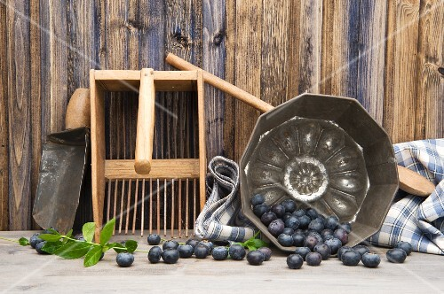 Blueberries and old fashioned kitchen utensils
