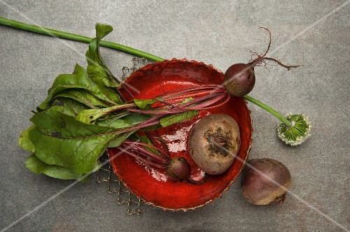 Fresh beetroot in a red bowl