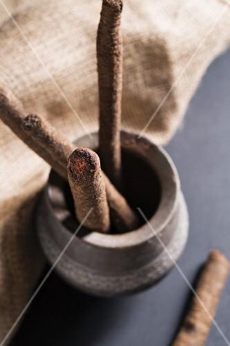 Black salsify in an earthenware pot