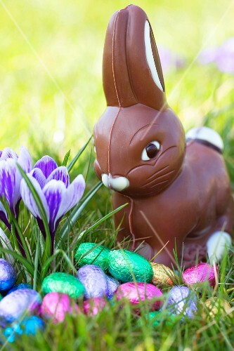 A chocolate Easter Bunny and Easter eggs wrapped in colourful foil in spring field