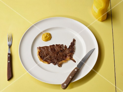 Slice of meat in shape of US
