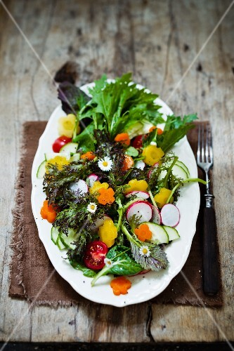 Wild herb salad with carrot flowers and radishes