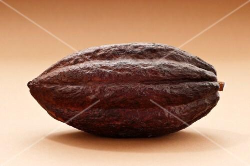 A cacao fruit