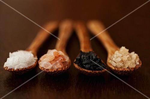 Four types of salt on wooden spoons: sea salt, black salt, pink Himalayan salt and smoked salt