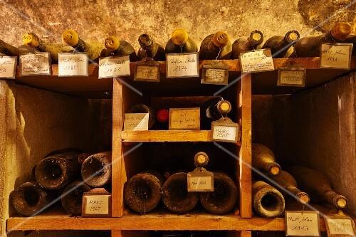 Very old bottles in cellar of Caves Jean Bourdy, Arlay, Jura, France (Côtes du Jura)