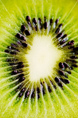 A slice of kiwi (detail)
