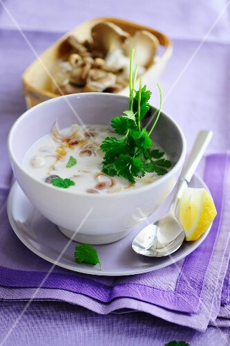 Coconut soup with oyster mushrooms
