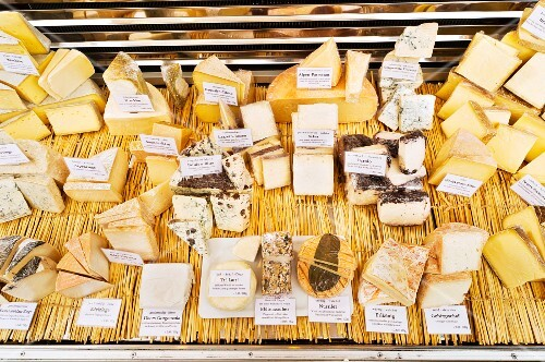 A large selection of cheese