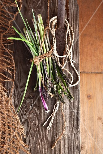 Wild asparagus and onions