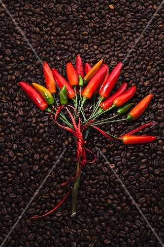 Chillis on a bed of coffee beans