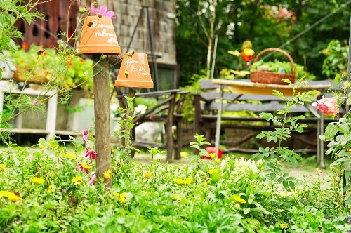 A flower bed in a garden with flowerpot signs