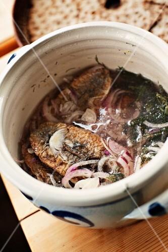 Pickled fried herring