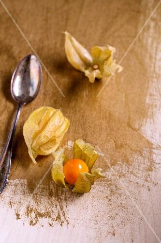 Gooseberries in Husks in a Spoon