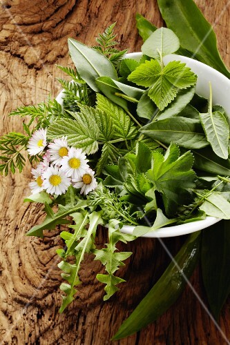 Freshly picked wild herbs