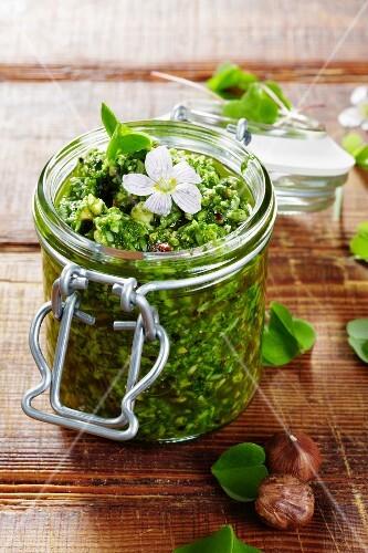 A jar of Alpine clover pesto
