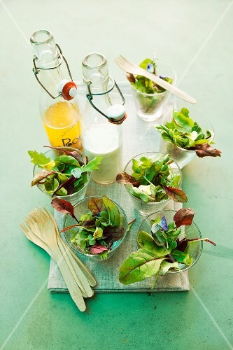 Mixed leaf salads with vinaigrette and yogurt dressing