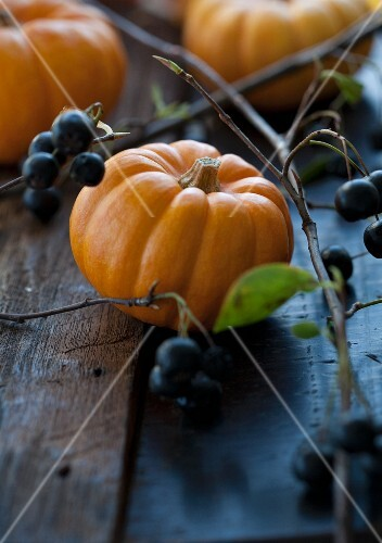 Aronia berries and pumpkins