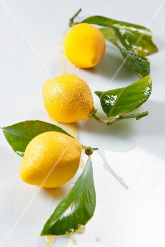 Lemon sweets with leaves