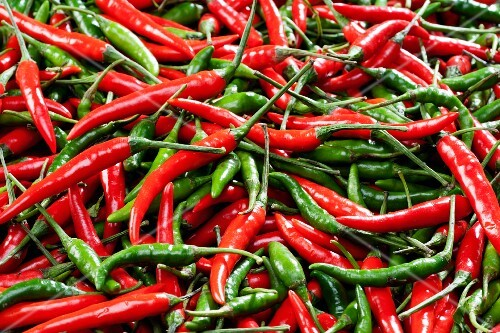 Red and green chillies