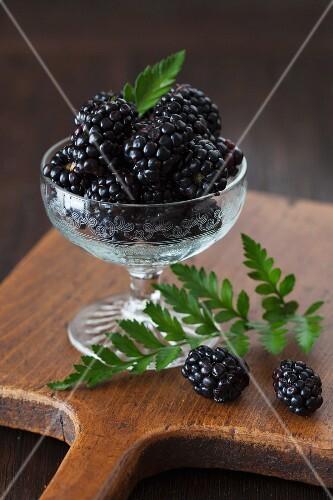 Fresh blackberries in a dessert glass