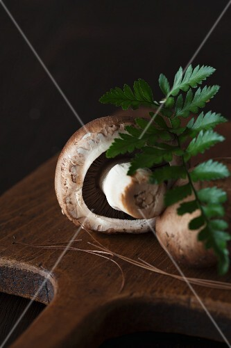 Brown mushrooms on a wooden board with fern leaves