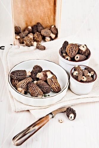 Bowls of fresh morel mushrooms