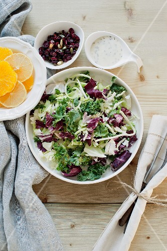 A mixed leaf salad with citrus fruits, cranberries and a yogurt dressing