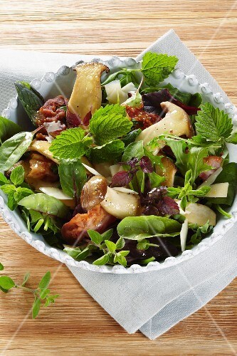 Wild herb salad with king trumpet mushrooms