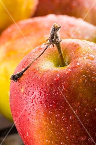 Freshly washed apples (close-up)