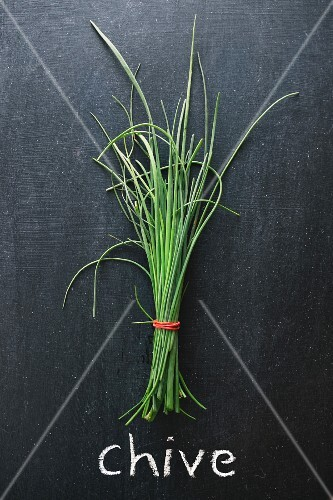 A bunch of chives on a chalkboard above the word 'Chive'
