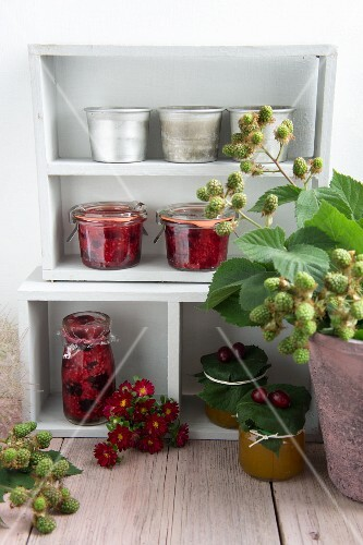 Various types of jam and blackberries sprigs on a shelf