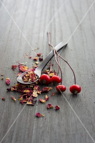 A spoonful of rosehip tea leaves