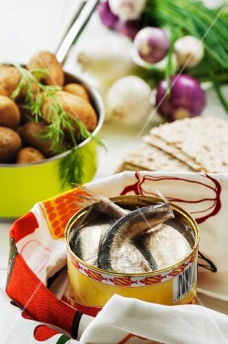 Fermented herring, potatoes, onions and crispbread (Sweden)