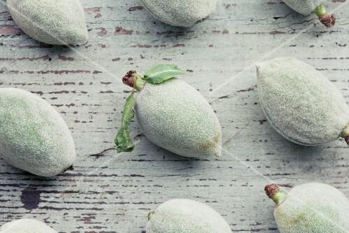 Unripe almonds in their shells