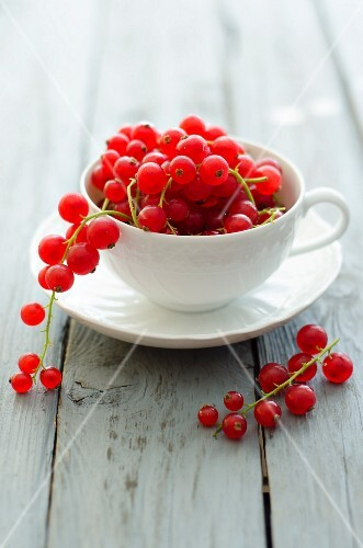 A cup of redcurrants