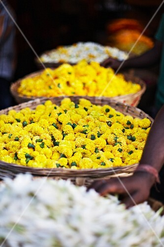 Yellow and white flowers at a flower market in Mumbai, India