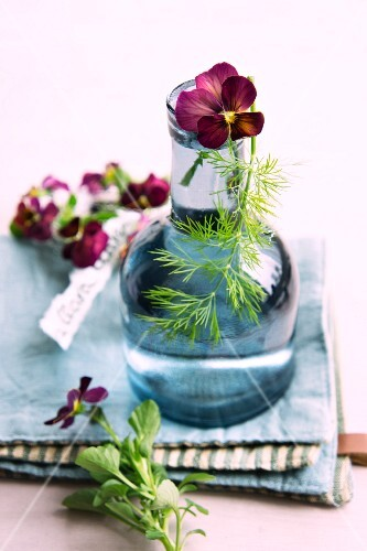 A vase of tufted pansies and fennel leaves