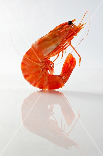 A cooked prawn