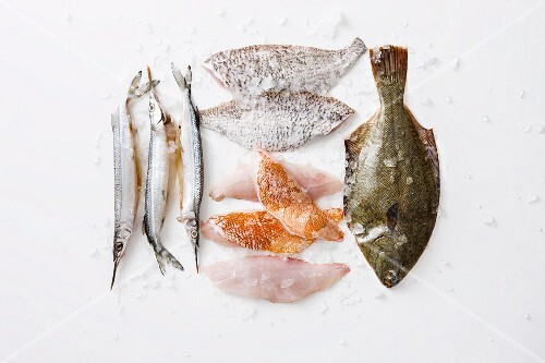 Various types of fish and fish fillets for grilling