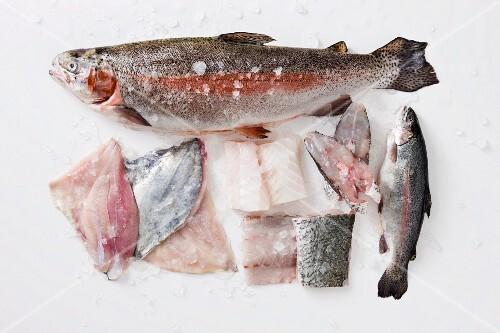 Various fish for poaching