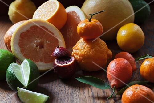 An arrangement of citrus fruits featuring kumquats, blood oranges, mandarins, lemons, oranges and grapefruits
