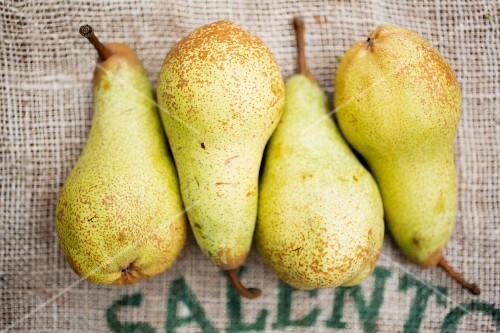 Four pears on a piece of jute (seen from above)