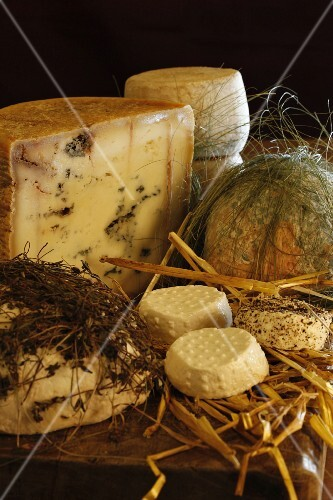 Various types of cheese on straw