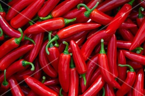 Fresh red chilli peppers (full frame)