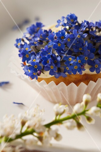 A cupcake with spring flowers