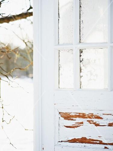 Icy window in shed door