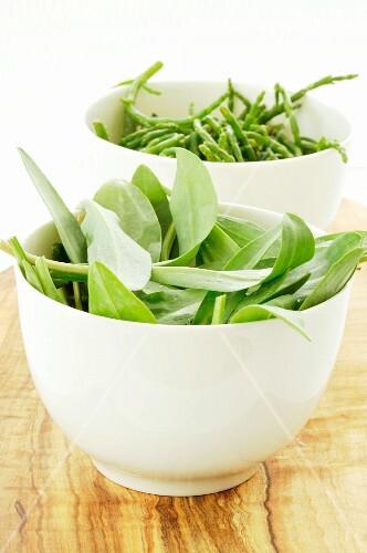 Bowls of wild garlic and glasswort
