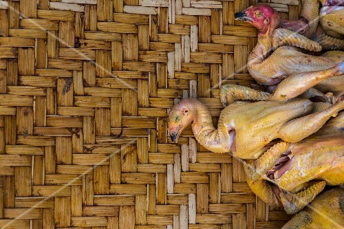 Freshly plucked chickens on a bamboo tray, Laos