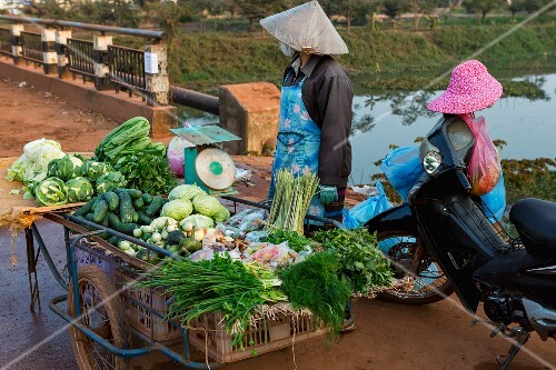 Vegetable sellers at a market in Laos