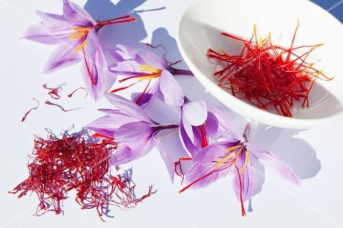 Saffron threads and saffron flowers